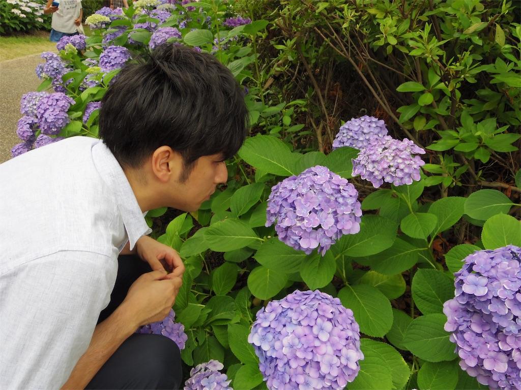 f:id:nishiokentoday:20170716123107j:image