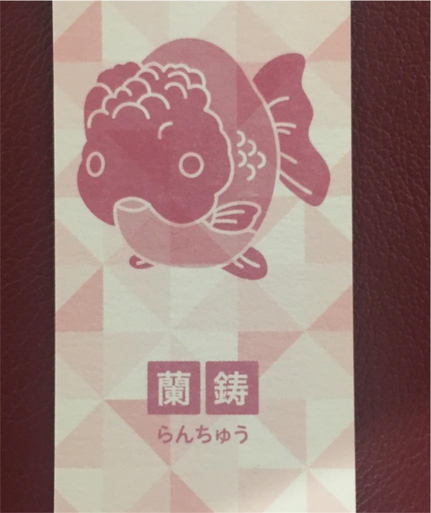 f:id:nishiokentoday:20170828215244j:image