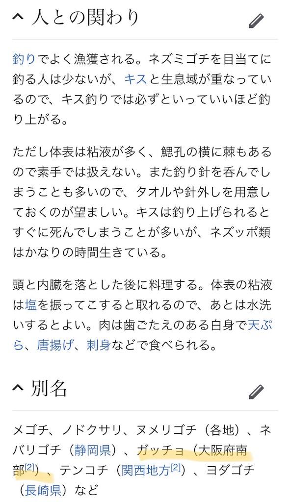 f:id:nishiokentoday:20180719200347j:image