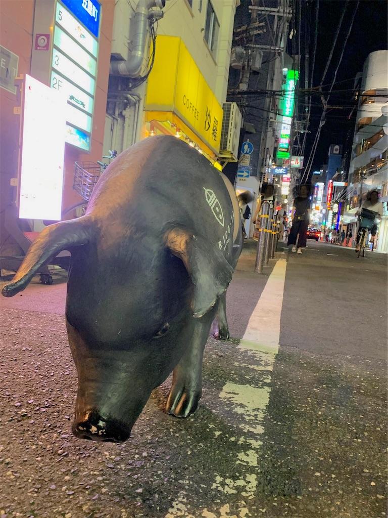 f:id:nishiokentoday:20190821102441j:image