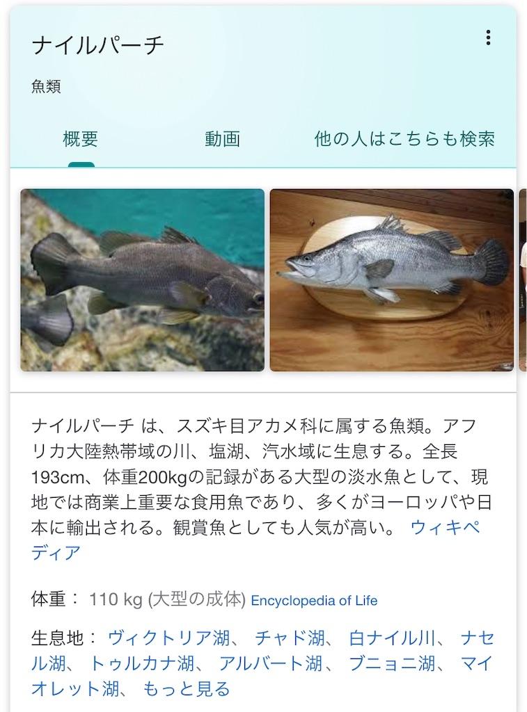 f:id:nishiokentoday:20190930155725j:image