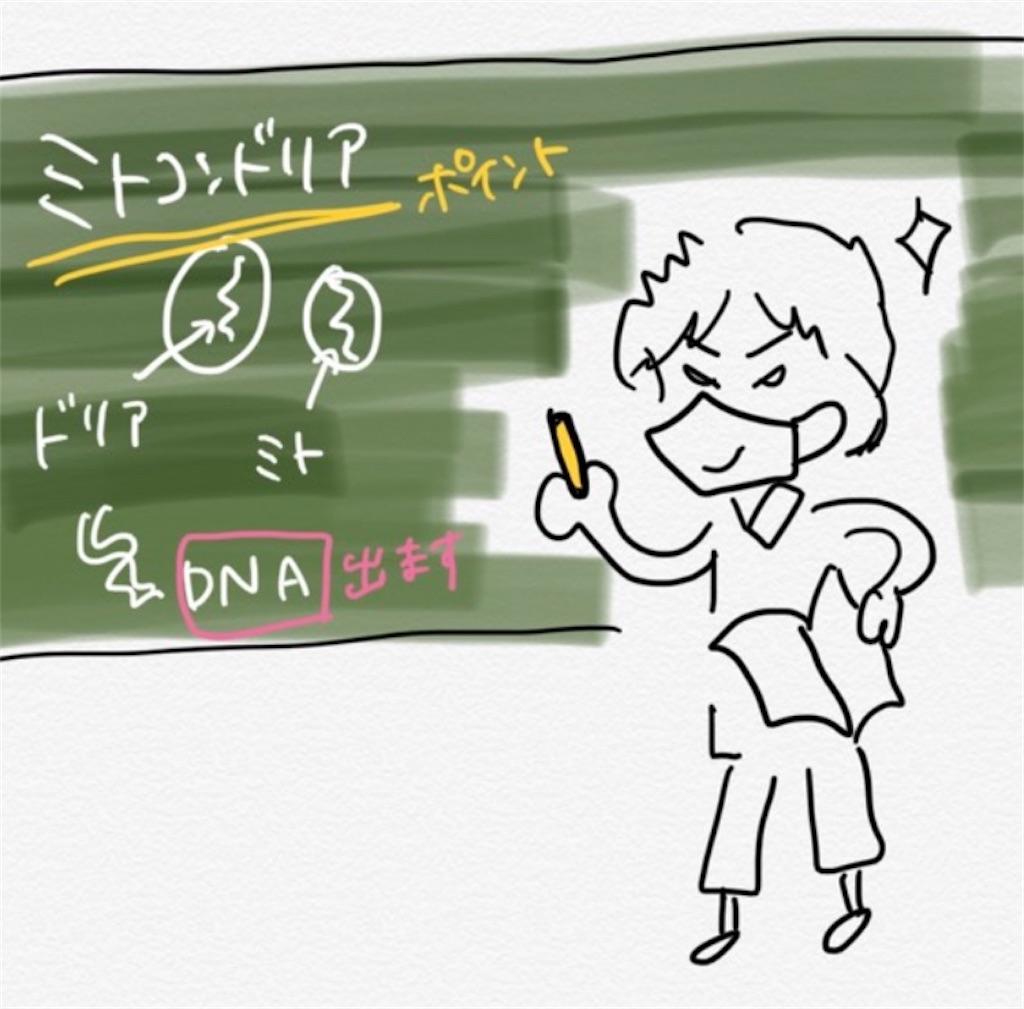 f:id:nishiokentoday:20200925184338j:image
