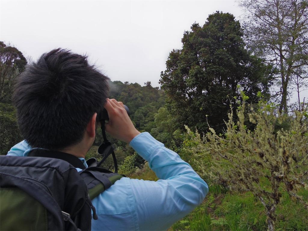 f:id:nishiokentoday:20201111195105j:image