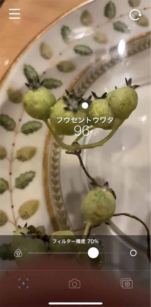 f:id:nishiokentoday:20201122192948j:image