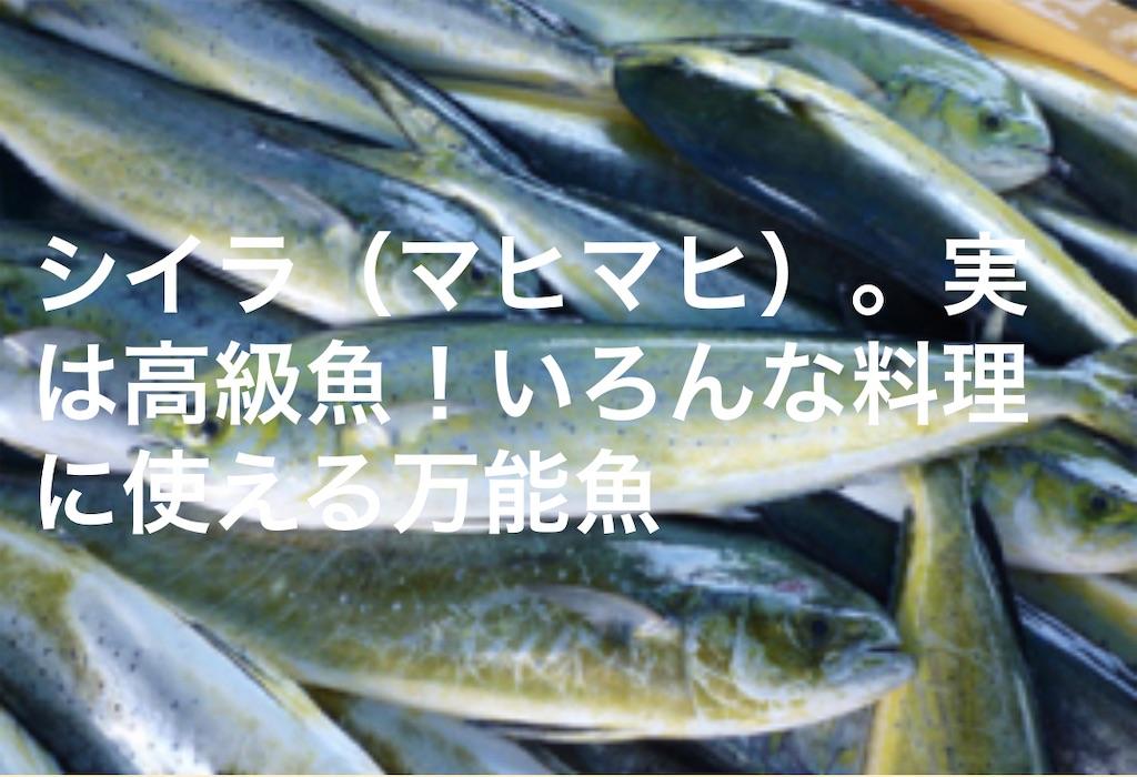 f:id:nishiokentoday:20210306235908j:image