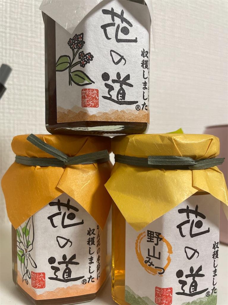 f:id:nishiokentoday:20211010225217j:image