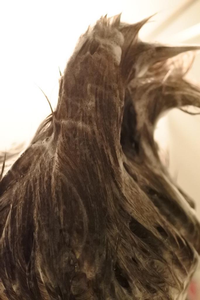 haru kurokamiスカルプ(黒髪スカルプ)で洗って、泡立った髪がたっているところ