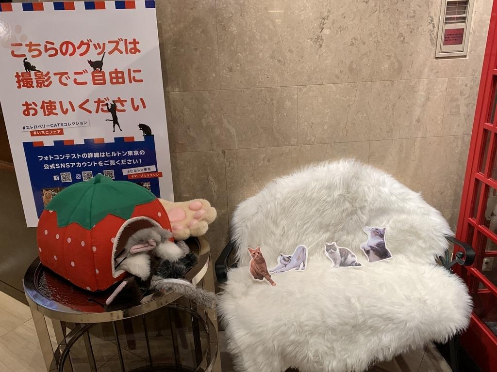 西新宿 ヒルトン東京 マーブルラウンジ「ストロベリー CATSコレクション」のフォトブース