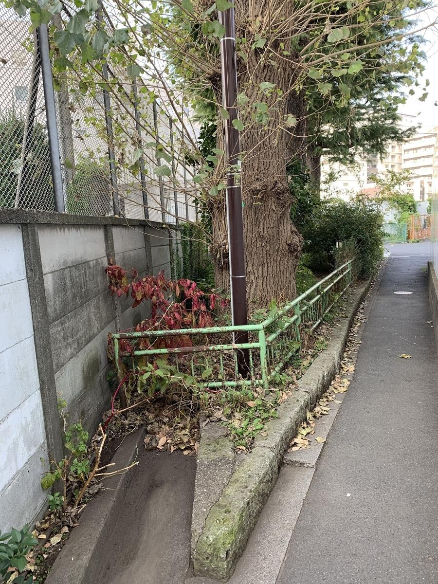 f:id:nishishinjyuku:20200227182401j:plain