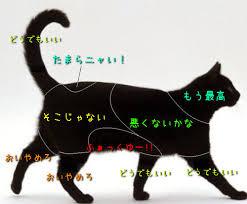 f:id:nishitomoyan:20161027171354j:plain
