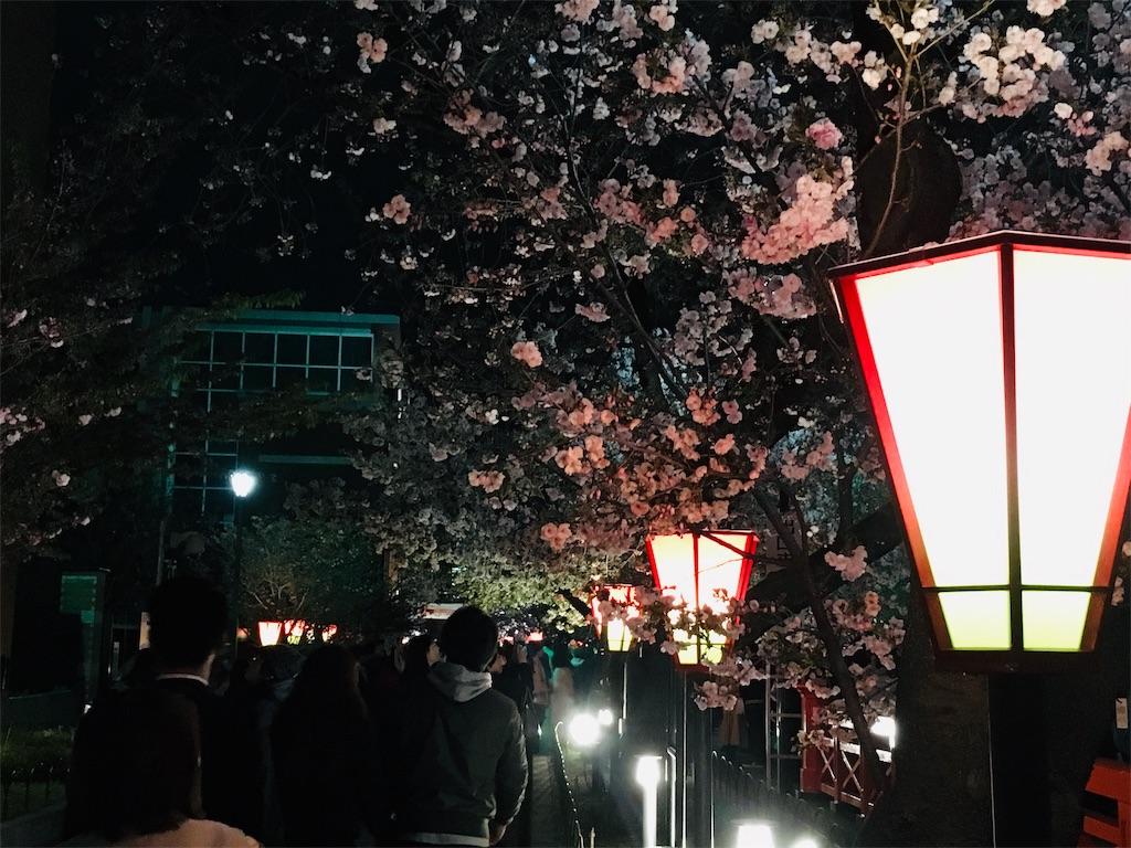 f:id:nishiumedazacca:20190412072419j:image