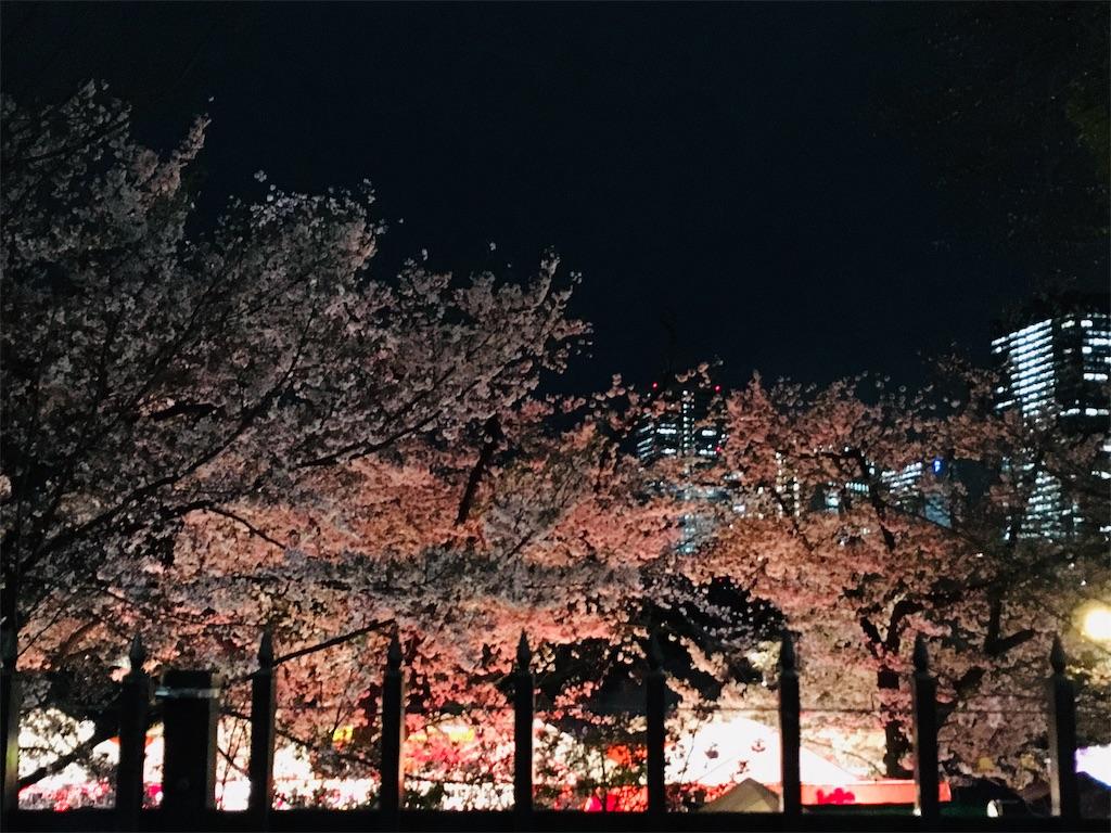 f:id:nishiumedazacca:20190412072553j:image