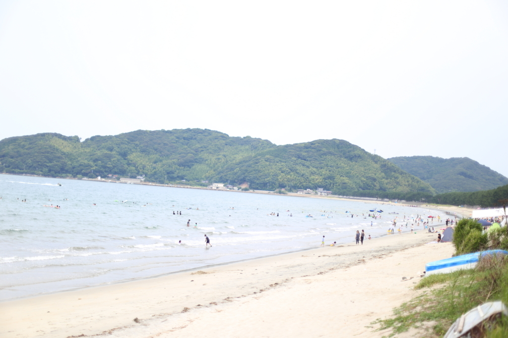 f:id:nishizawahontensasebo:20170907123406j:plain