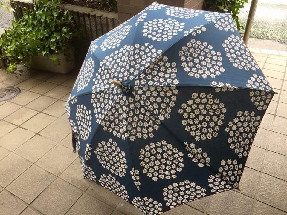 f:id:nishizawahontensasebo:20180320101805j:plain