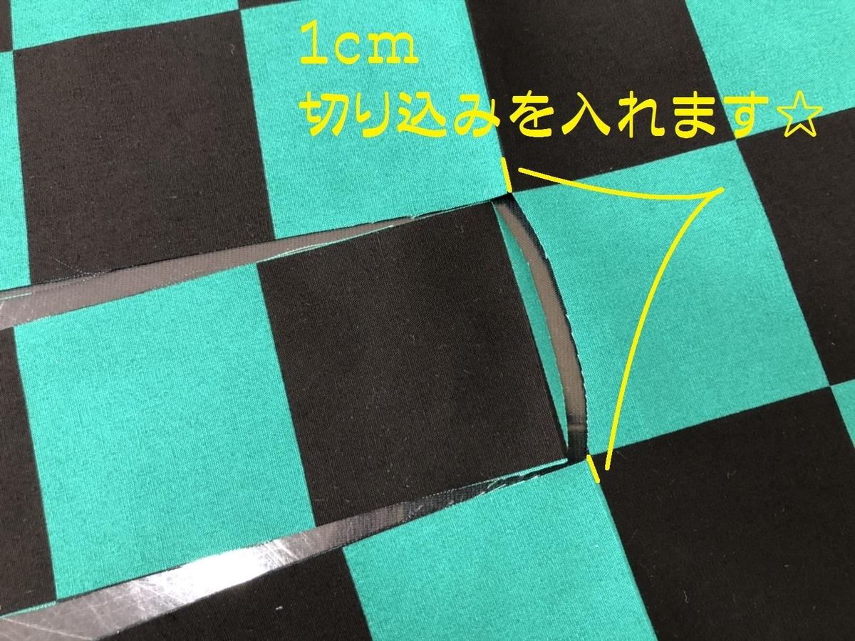 f:id:nishizawahontensasebo:20201021165857j:plain