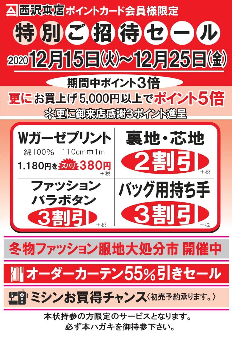 f:id:nishizawahontensasebo:20201213155925j:plain