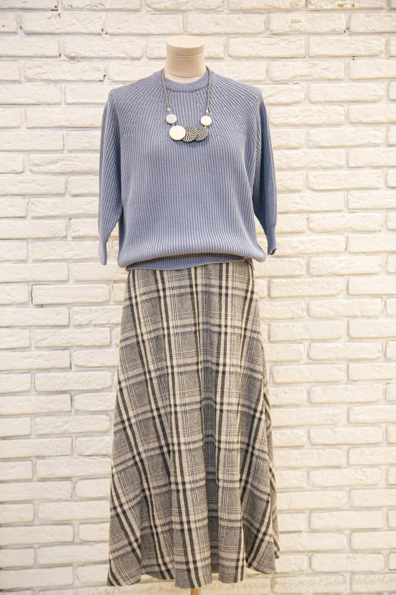 f:id:nishizawahontensasebo:20210914180548j:plain