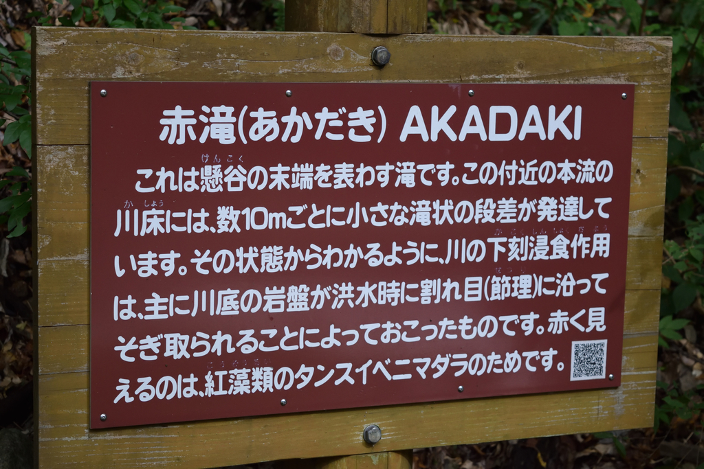 f:id:nisiki_satika:20181020223249j:plain