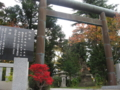 西野神社のドウダンツツジ