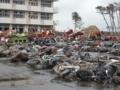 大震災から9カ月後の仙台 荒浜地区(大量の瓦礫)