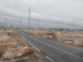 大震災から9カ月後の仙台 荒浜地区(立て直された電柱)