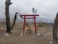 大震災から9カ月後の仙台 荒浜地区(朱塗りの小さな鳥居)