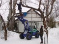 冬季の境内剪定作業