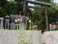 平成24年 夏の西野神社境内