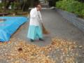 秋の境内掃き掃除