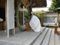 平成26年 夏越大祓式