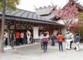 西野神社(札幌近郊桜めぐりツアー)