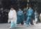 青い雑色(春日大社にて)