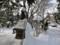 平成27年11月25日 西野神社 境内の景観