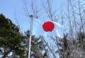 平成28年 西野神社 紀元祭の日の朝の境内
