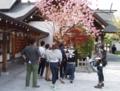 平成28年5月 BSアサヒ「ハラホリ」西野神社ロケ