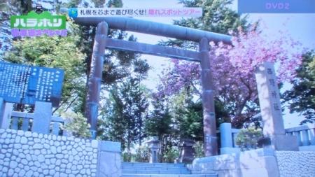 BSアサヒ「ハラホリ」最終回(西野神社)