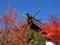 西野神社 秋の風景