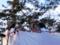 西野神社節分祭 豆撒き