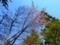 西野神社 春の境内の景色(平成29年5月2日)
