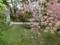 平成29年5月下旬 西野神社境内の風景