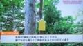 平成29年10月14日放送 HTBテレビ「LOVE HOKKAIDO」より
