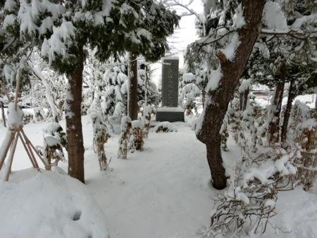 平成29年11月19日の西野神社境内