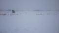 平成29年11月19日の札幌郊外の雪景色