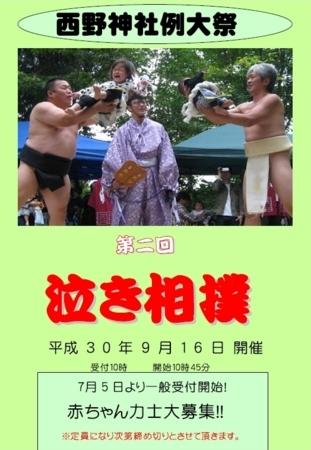 平成30年「泣き相撲」チラシ(表面)