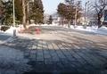 平成31年2月28日の西野神社境内