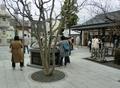 令和元年初日の西野神社境内