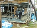 西野神社儀式殿 建築工事