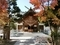 西野神社境内 秋の景色