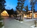 令和元年12月 西野神社境内のライトアップ