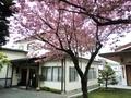令和2年5月中旬 西野神社 社務所